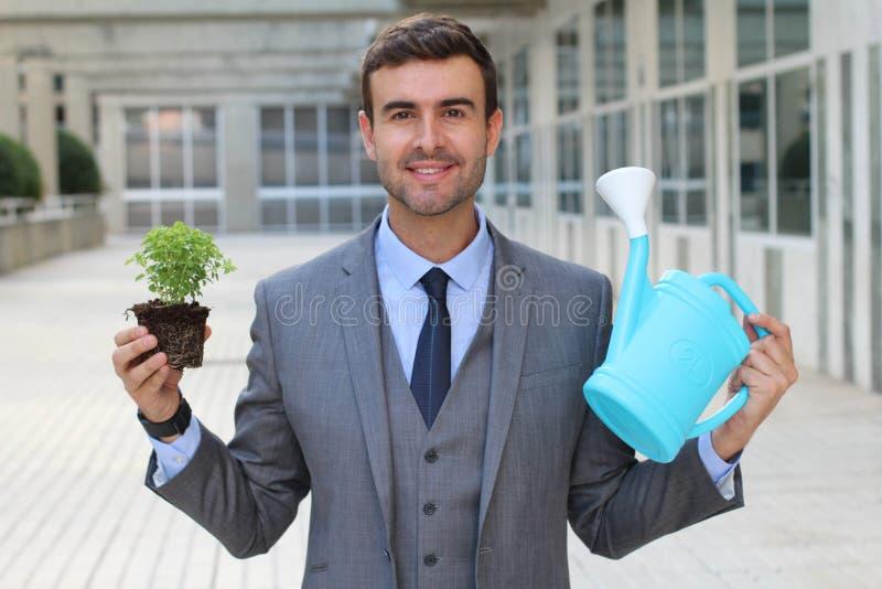 Vrolijke zakenman die juiste zorg van een installatie nemen royalty-vrije stock afbeeldingen