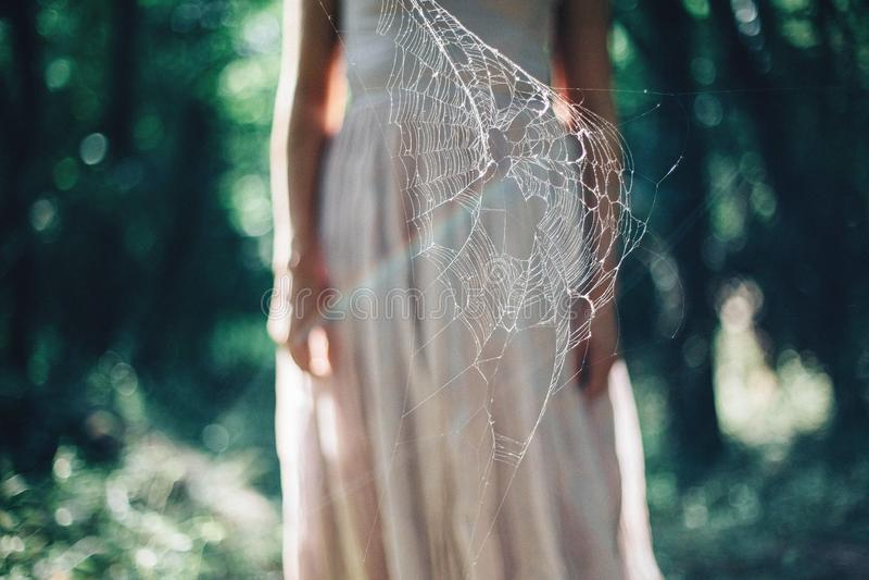 Vrouw achter spiderweb royalty-vrije stock foto