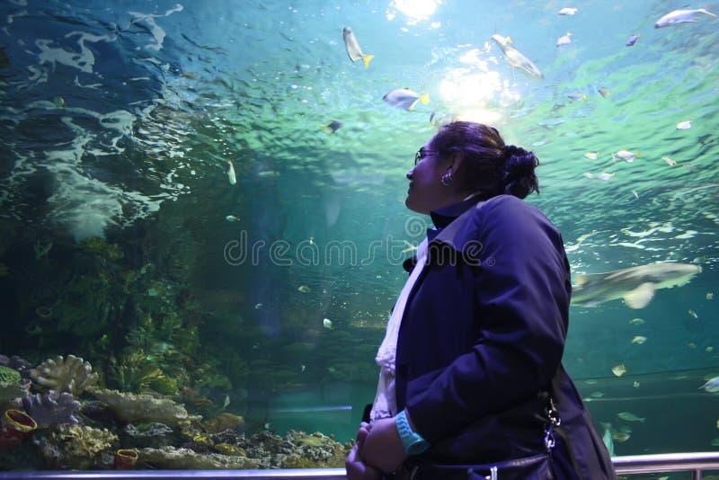 Vrouw in aquarium royalty-vrije stock fotografie