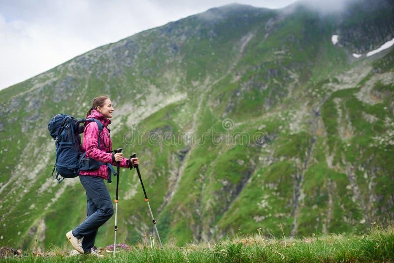 Vrouw backpacker met trekkingsstokken die in bergen van Roemenië wandelen royalty-vrije stock foto