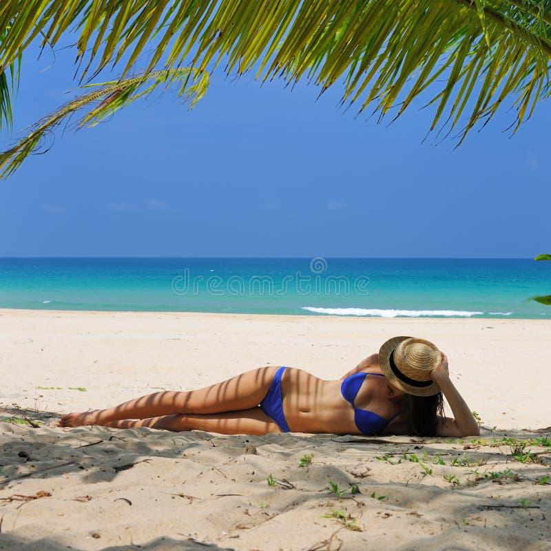 Download Vrouw Bij Strand Onder Palm Stock Afbeelding - Afbeelding bestaande uit sensueel, toerisme: 29505463