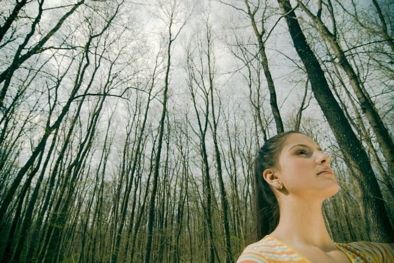 Vrouw in bos stock afbeeldingen