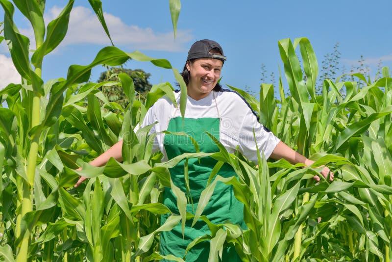 Vrouw in cornfield royalty-vrije stock fotografie