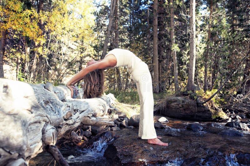 De Aard van de yoga royalty-vrije stock afbeeldingen
