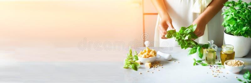 Vrouw in de overmaatse pot van de kledingsholding met vers organisch basilicum, wit keuken binnenlands ontwerp De ruimte van het  stock afbeelding