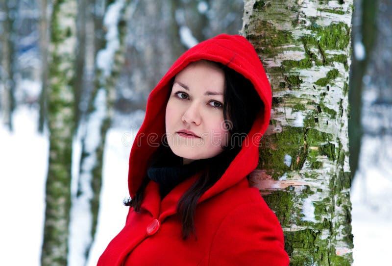 Vrouw in de winterbos royalty-vrije stock afbeeldingen
