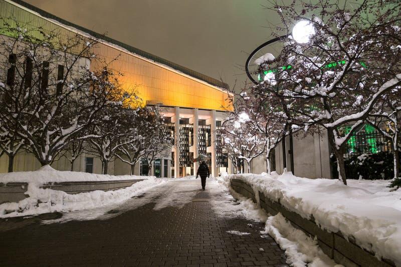 Vrouw die bij nacht in sneeuwsteeg naar de plaats-des-Kunsten in de sector lopen van de binnenstad, Montreal, Quebec stock foto's