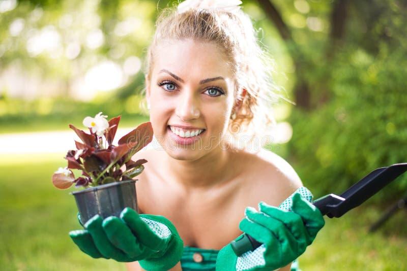 Vrouw die bloemen plant stock afbeeldingen