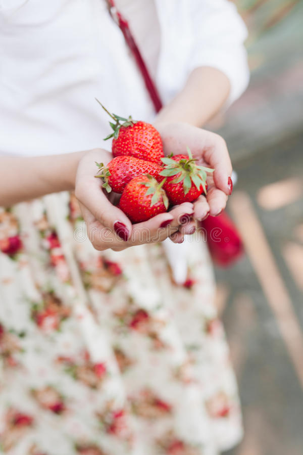 Vrouw die in bloemkleding een bos van aardbeien houden royalty-vrije stock fotografie