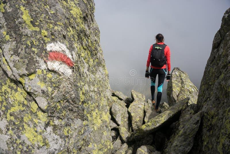 Vrouw die in de bergen van Roemenië lopen stock foto
