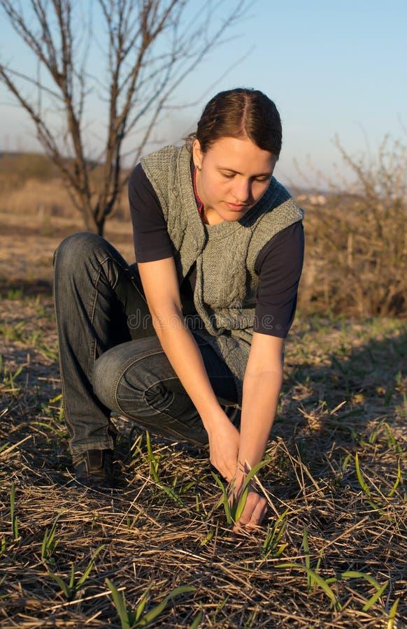 Vrouw die in de tuin werken stock afbeelding