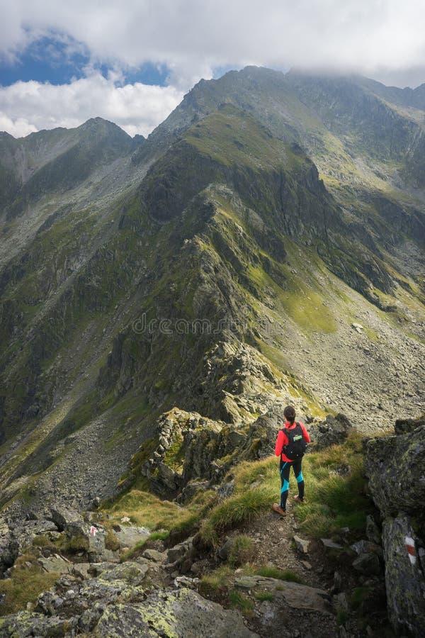 Vrouw die de verbazende mening in de bergen bewonderen stock foto