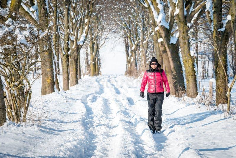 Vrouw die in de winter door de sneeuw wandelen stock afbeelding