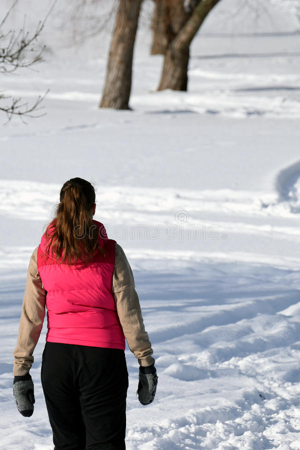 Vrouw die in de winterpark lopen stock afbeelding