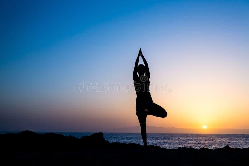 Vrouw die de zonsondergangsilhouet doen van de yogaboom royalty-vrije stock afbeelding