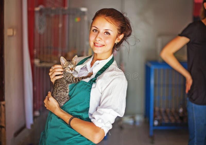 Vrouw die in dierlijke schuilplaats werken stock afbeeldingen