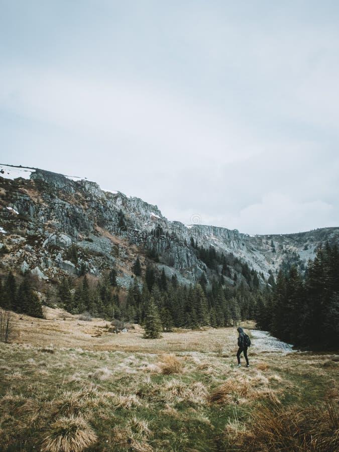 Vrouw die door een vallei op een berg met groene bomen en sneeuw op de bovenkant wandelen royalty-vrije stock foto