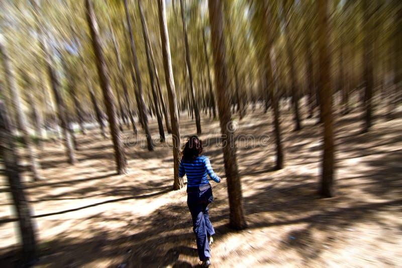 Vrouw die door het hout ontsnapt stock foto's