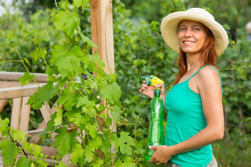 Vrouw die druivenoplossing spuiten royalty-vrije stock afbeelding