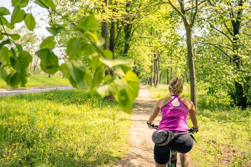 Vrouw die een bergfiets in stadspark cirkelen, de zomerdag stock afbeelding