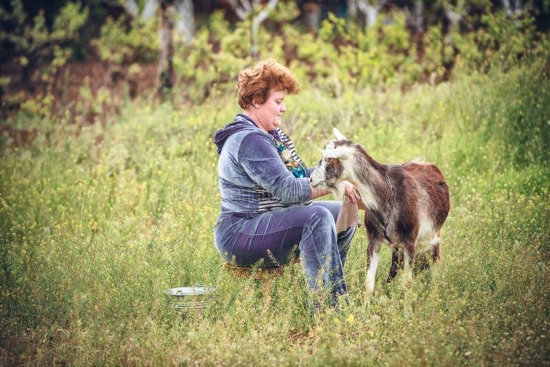 Vrouw die een geit melken royalty-vrije stock foto