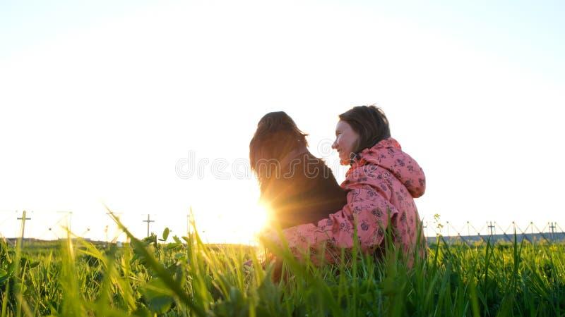 Vrouw die een hond bij zonsondergang, een jong meisje met een huisdierenzitting op het gras en het ontspannen in aard koesteren stock afbeelding