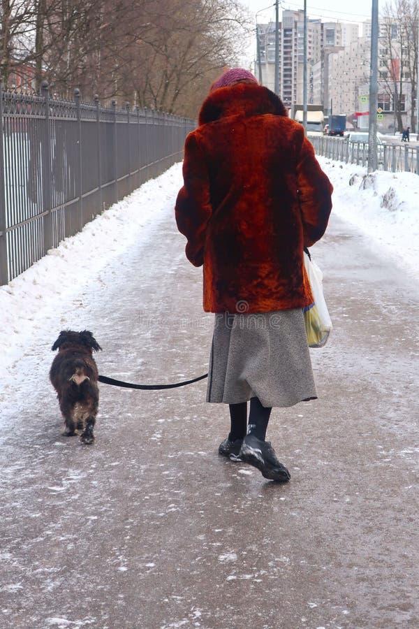 Vrouw die een hond langs een de winterstraat lopen stock foto