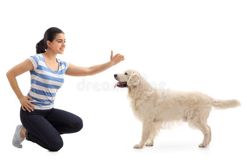 vrouw die een hond petting royalty-vrije stock afbeeldingen