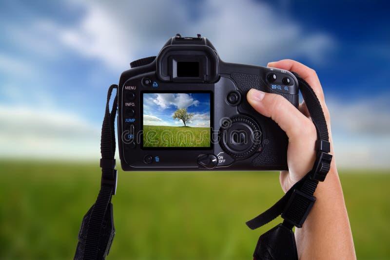 Vrouw die een landschapsfoto neemt royalty-vrije stock fotografie