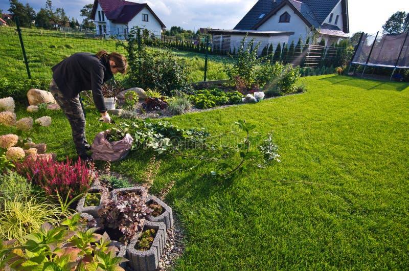 Vrouw die in een tuin, scherpe bovenmatige takjes werken van installaties royalty-vrije stock afbeelding