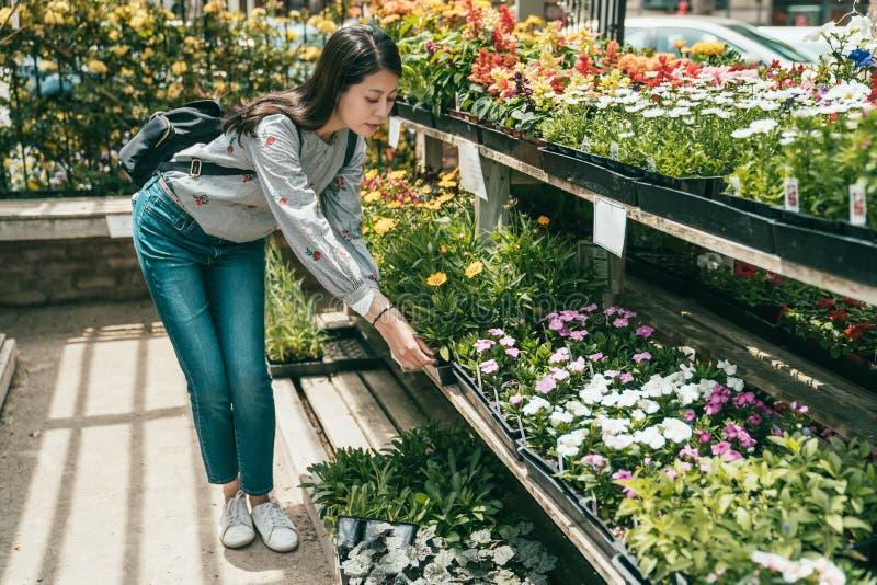 Vrouw die en bloemen in bloemist buigen kiezen stock afbeeldingen