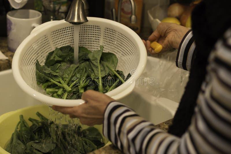 Vrouw die groene groente in witte mand in een keukengootsteen wassen royalty-vrije stock foto
