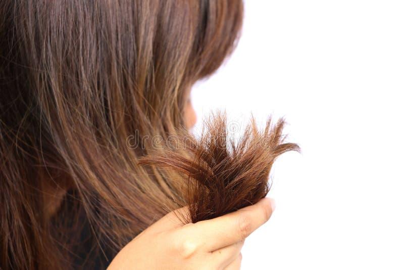 Vrouw die haar lange haren houden die kleurenbehandelingen maken De haren hebben probleem misschien gespleten eind Indien be?indi stock afbeelding