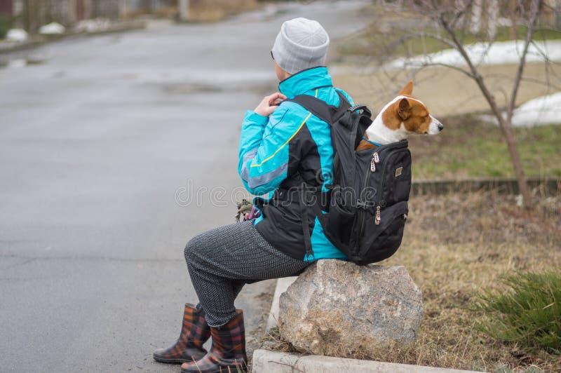 Vrouw die korte rust zitting op een steen hebben terwijl het lopen met haar luie Basenji-hond stock afbeelding