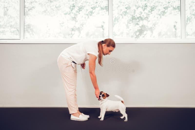 Vrouw die leuke hond behandelen die zich dichtbij venster bevinden stock fotografie