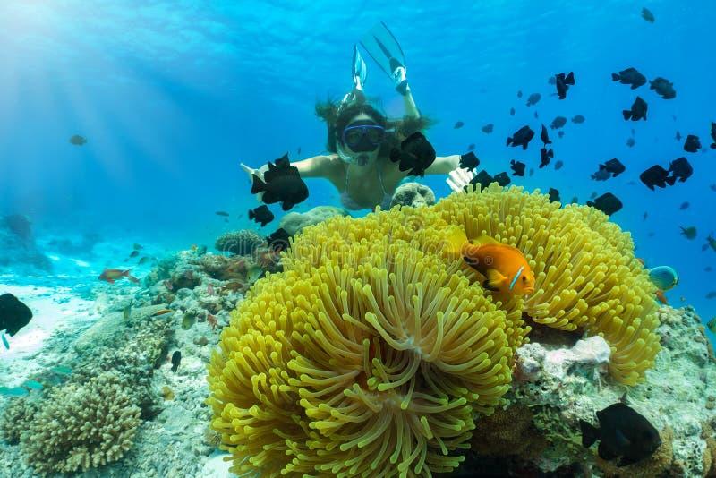 Vrouw die met een clownfish in de Indische Oceaan snorkelen stock afbeeldingen