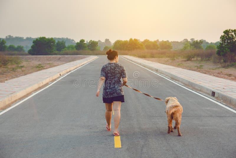 Vrouw die met haar golden retrieverhond op de openbare weg lopen royalty-vrije stock fotografie
