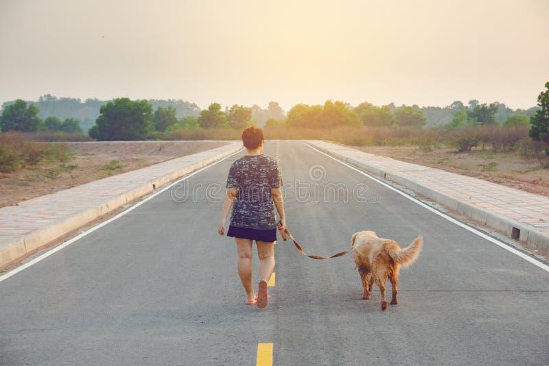 Vrouw die met haar golden retrieverhond op de openbare weg lopen royalty-vrije stock afbeeldingen