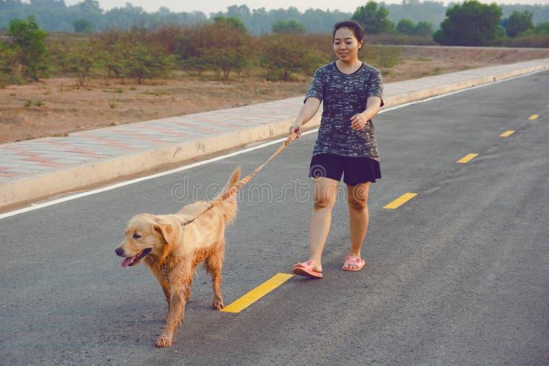 Vrouw die met haar golden retrieverhond op de openbare weg lopen royalty-vrije stock afbeelding