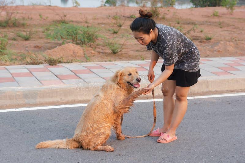 Vrouw die met haar golden retrieverhond op de openbare weg lopen royalty-vrije stock foto's