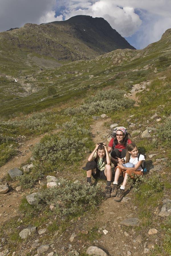 Vrouw die met jonge geitjes in bergen, Noorwegen wandelt stock afbeeldingen