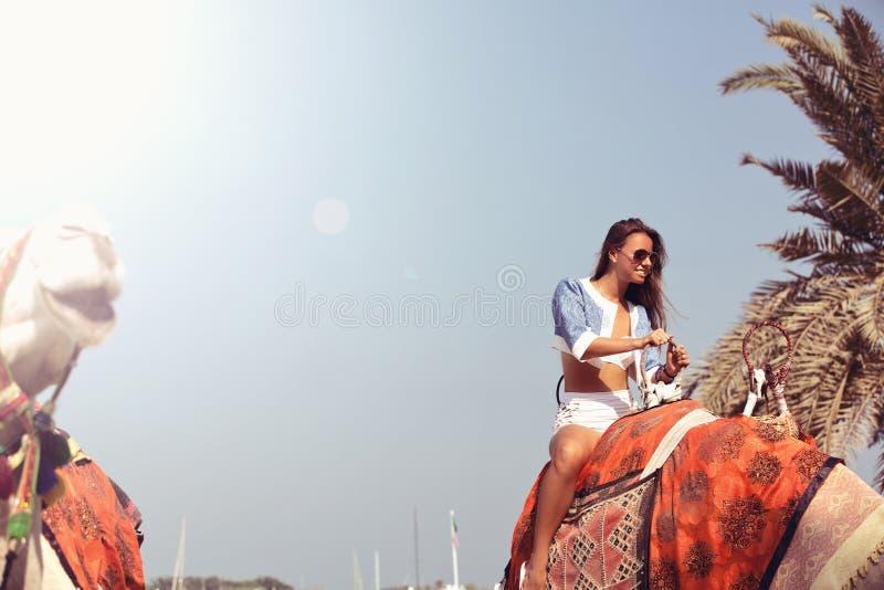 Vrouw die op kameel reizen stock afbeeldingen