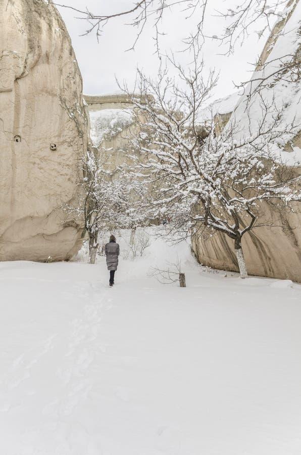 Vrouw die op sneeuw in de winter lopen stock afbeeldingen