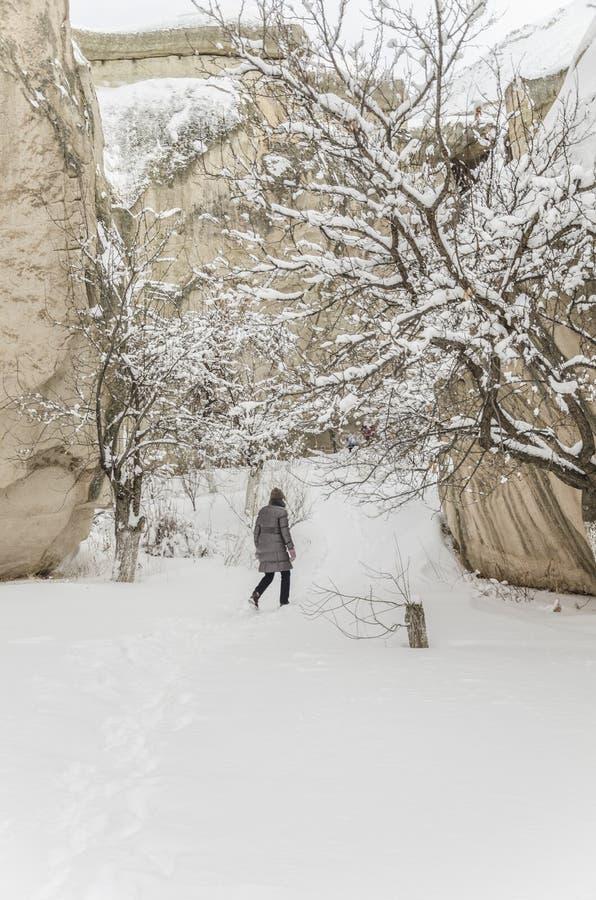 Vrouw die op sneeuw in de winter lopen stock fotografie