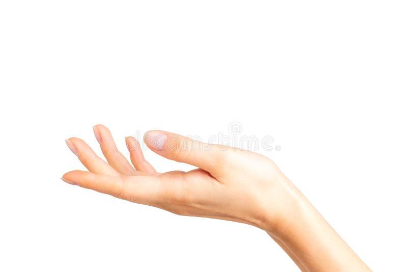 Vrouw die open hand tonen of iets houden royalty-vrije stock afbeeldingen