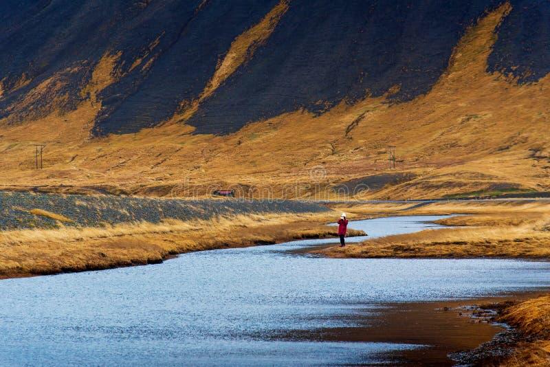 Vrouw die overweldigend Ijslands landschap genieten van stock foto's