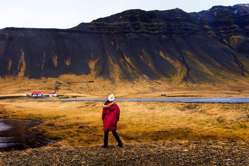 Vrouw die overweldigend Ijslands landschap genieten van stock afbeelding