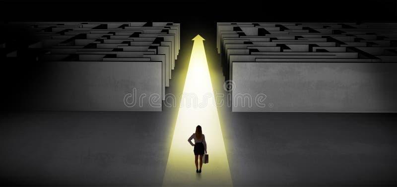 Vrouw die rechtstreeks tussen twee labyrinten doorgaan royalty-vrije illustratie