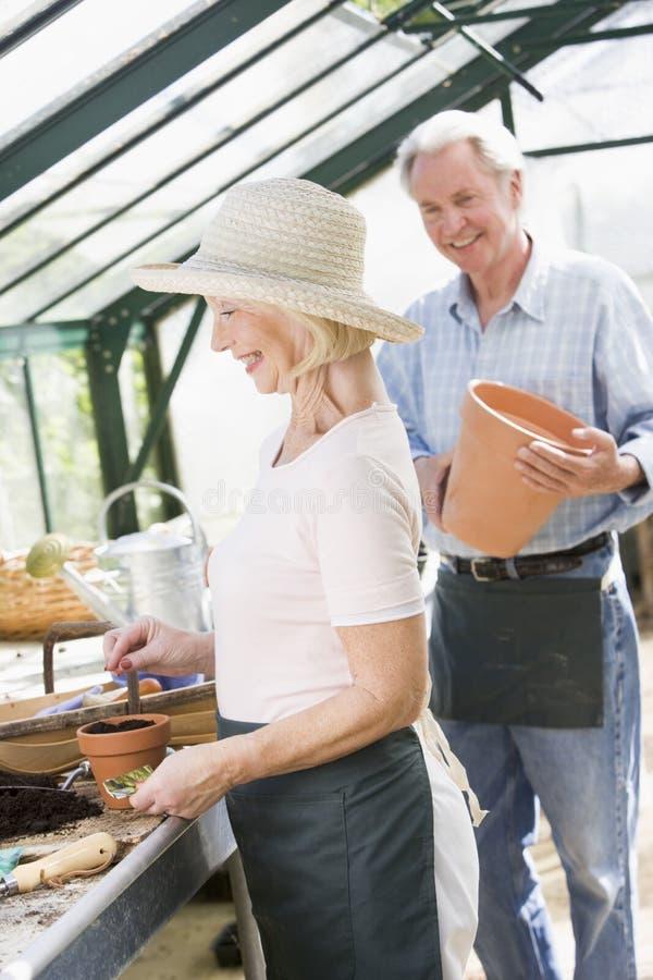 Vrouw die in serre zaden en een man plant royalty-vrije stock foto
