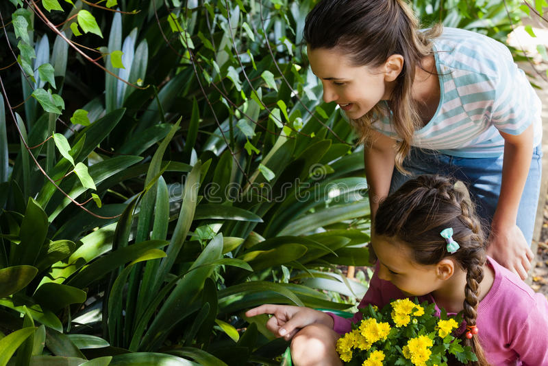 Vrouw die terwijl dochterzitting die in kruiwagen naar installaties richten kijken royalty-vrije stock foto's